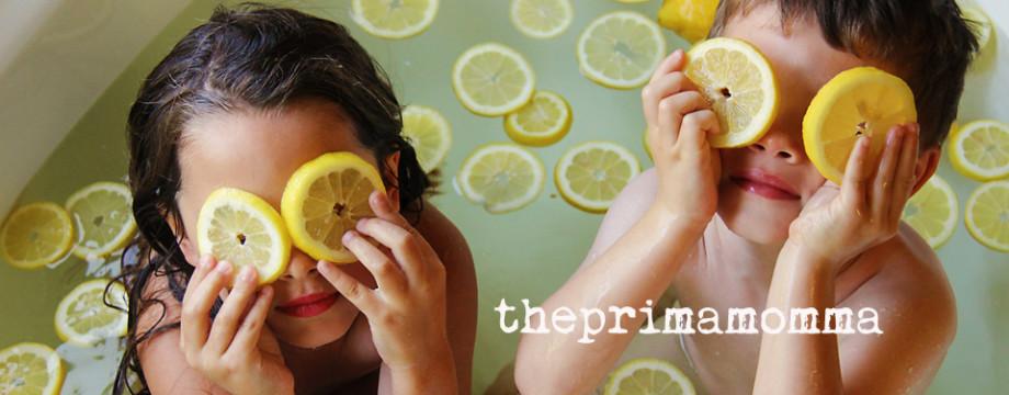theprimamomma.com